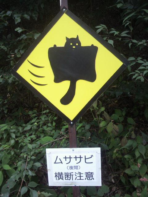 動物の気配