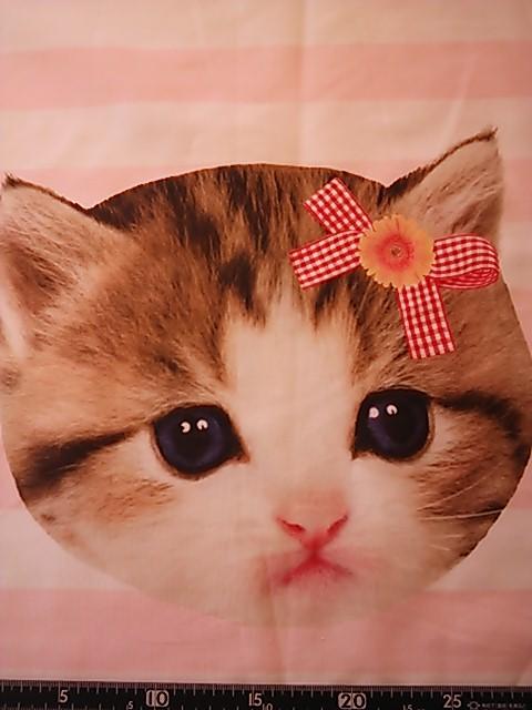子猫の顔柄の布地