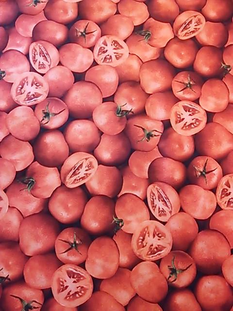 トマト柄の布地
